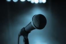 Тюн вокала, выравнивание по нотам и ритмически 18 - kwork.ru