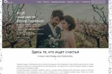 Создам лендинг на wordpress 19 - kwork.ru