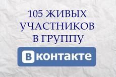 500 живых участников в группу ВК, ВКонтакте, без ботов и программ 13 - kwork.ru