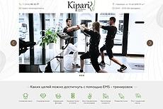 Дизайн главной страницы простого сайта 34 - kwork.ru