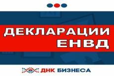 Декларация по ЕНВД для ИП 9 - kwork.ru