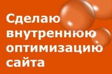 проведу SEO-консультацию по Скайп (1час) 3 - kwork.ru
