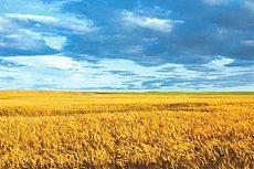 Составлю подробный маршрут для поездок по Украине и ближнему зарубежью 2 - kwork.ru