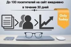 Привлеку на ваш сайт целевой ГЕО трафик 11 - kwork.ru