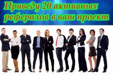 Качественный поисковый трафик от 20 до 100 в сутки с мега параметрами 23 - kwork.ru