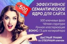 Соберу семантическое ядро (СЯ) для вашего сайта до 300 ключевых слов 24 - kwork.ru