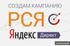 Настройка объявлений в Яндекс Директ, оптимизация контекстной рекламы 18 - kwork.ru