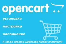 Перенос магазинов на Opencart 17 - kwork.ru