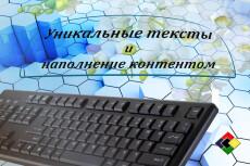 Напишу 6000 символов качественного текста для вашего сайта 43 - kwork.ru