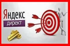 Настрою Яндекс-Директ. Аудит бесплатно! Дам ценные рекомендации по рекламе 7 - kwork.ru