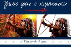 Создам три варианта Вашего логотипа 30 - kwork.ru