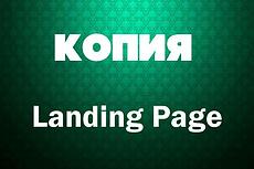 Скопирую Landing. Точная копия лендинга 221 - kwork.ru
