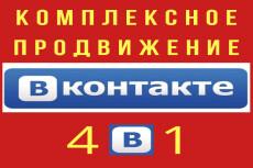 1000 качественных подписчиков -Продвижение групп Вконтакте + бонус 11 - kwork.ru
