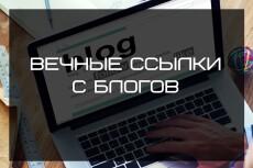 Вечные ссылки из соцсетей. Общая аудитория более 120000 подписчиков 15 - kwork.ru