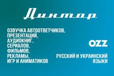 Профессиональная дикторская озвучка текста 23 - kwork.ru