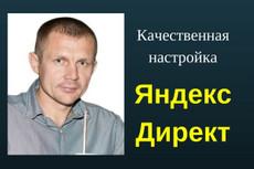 Создам/настрою рекламную кампанию в Яндекс.Директ (до 100 объявлений) 7 - kwork.ru