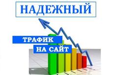 3000 посетителей НА САЙТ ЗА 2 ДНЯ ИЗ поисковиков, ПО ключевым запросам 5 - kwork.ru