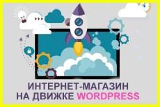 Сделаю сайт на Wordpress с любым дизайном на ваш выбор 9 - kwork.ru