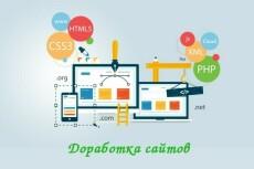 Починю баг Wordpress за 1 час 20 - kwork.ru