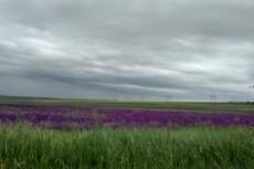 Могу выполнить цветокоррекцию фото 13 - kwork.ru