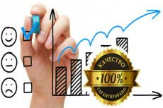 Качественный поисковый трафик от 80 до 100 в сутки целый месяц 13 - kwork.ru