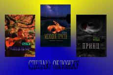 Сделаю обложку книги по инфопродуктам 29 - kwork.ru