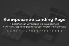 Копия лендинга за 1 час, с установкой на ваш хостинг 11 - kwork.ru