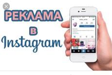 Размещу навсегда вашу рекламу в моем профиле о животных в Instagram 6 - kwork.ru