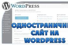 Создание одностраничника на Wordpress 79 - kwork.ru
