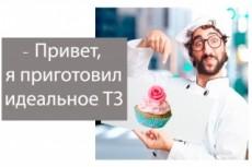 Составлю ТЗ по Пузату 26 - kwork.ru