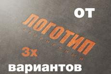 Разработаю для вас логотип 27 - kwork.ru