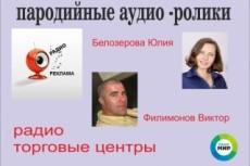 Начитки для рекламы, презентации, видеоролика. В срочном порядке 6 - kwork.ru