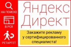 Экспертная настройка Яндекс Директ 3 в 1. Поиск, РСЯ и Ретаргетинг 26 - kwork.ru