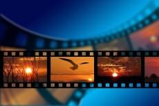 Сценарии короткометражные, ролики для youtube на детскую тематику 9 - kwork.ru