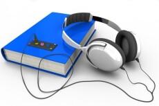 Расшифровка видео и аудио файлов 39 - kwork.ru