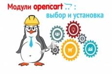 Opencart, OcStore. Установка и настройка 16 - kwork.ru
