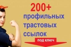 Настройка Яндекс Директ от профессионала + подарок 34 - kwork.ru