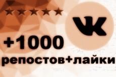 1000 Репостов +1000 Лайков ВКонтакте, комплект 19 - kwork.ru