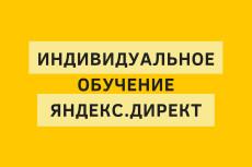 Индивидуальное обучение Яндекс. Директ в LIVE режиме по скайпу 11 - kwork.ru