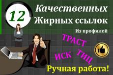 16 вечных жирных ссылок ТИЦ от 2500 общий более 155000 10 - kwork.ru