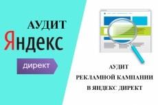 Аудит Яндекс Директ . Аудит Рекламных Кампаний + рекомендации+бонусы 9 - kwork.ru
