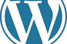 Создам landing page  на CMS WordPress 4 - kwork.ru