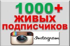 3000 Качественных Подписчиков Instagram плюс Лайки 19 - kwork.ru