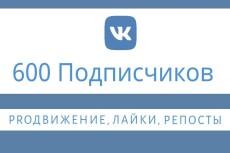 Привлеку в вашу группу в ВК 500 подписчиков 12 - kwork.ru