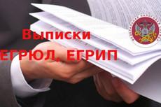Декларация ЕНВД для ООО и ИП 16 - kwork.ru