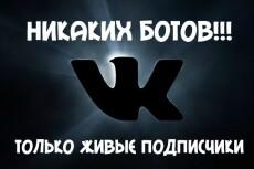 555 подписчиков на паблик, группу Вконтакте 10 - kwork.ru