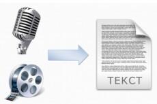 Сделаю текстовую версию аудио, видео, телефонных разговоров 20 - kwork.ru