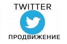 Добавлю 500 качественных фолловеров на Ваш аккаунт в твиттере 17 - kwork.ru