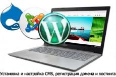 Регистрация домена .ru+2 месяца хостинга+SSL сертификат+установка CMS 20 - kwork.ru
