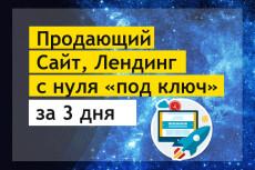Продающий Лендинг под ключ от экспертов + Подарок 20 - kwork.ru